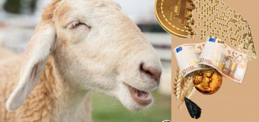 denaro bitcoin